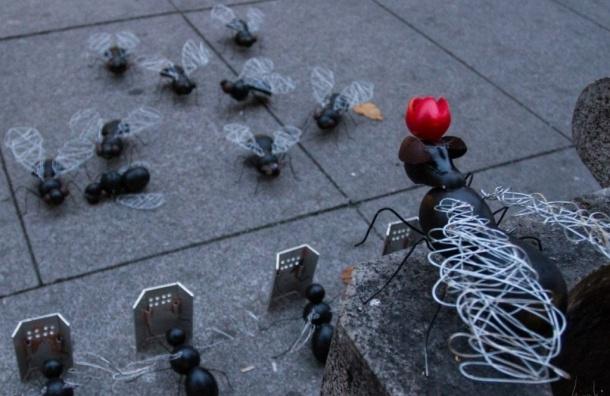 В центре Петербурга появилась колония мух