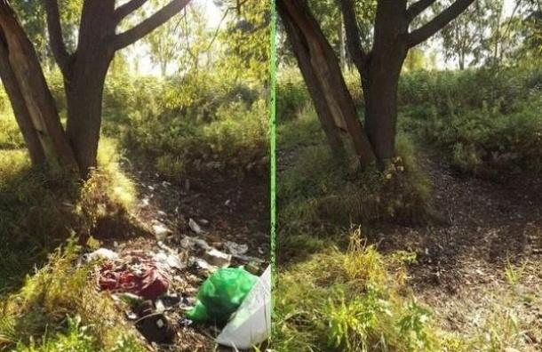 Волонтеры проекта «Сделаем!» зовут на помощь по уборке мусора