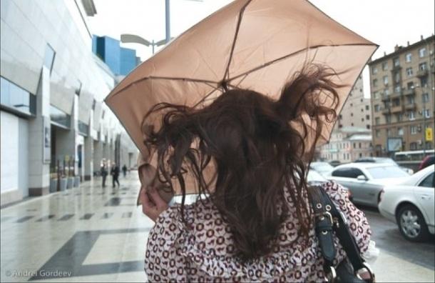 Сильный ветер придет в Петербург в пятницу и субботу