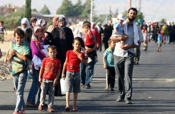 Куда бегут беженцы из Сирии: ООН опубликовало данные о мигрантах