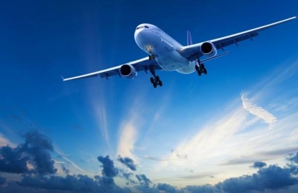 Следствие выявило 105 пилотов незаконно получивших статус в центре «Крылья Невы»