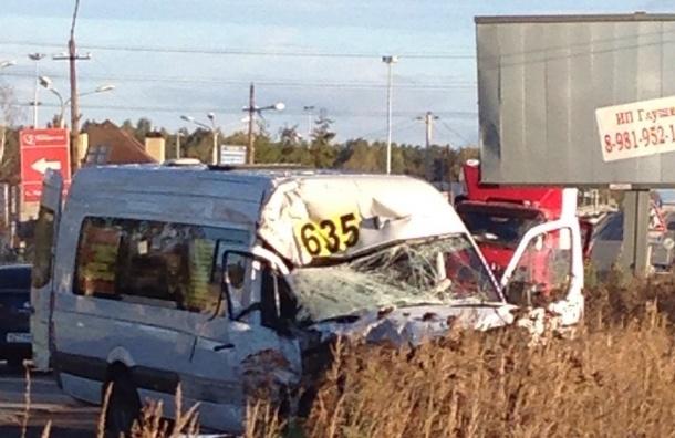 Авария с маршруткой произошла на Красносельском шоссе