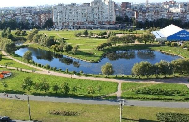 Правительство Петербурга отменило постановление о строительстве в парке Малиновка