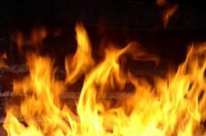В течение получаса на Ивановской улице сгорели три иномарки