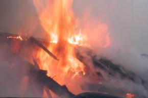 Баня горела в Выборгском районе