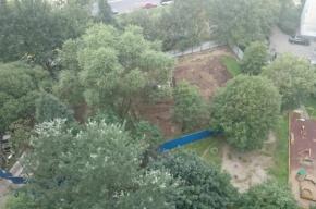 Петербуржцы просят остановить строительство кафе в сквере на Композиторов