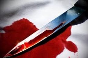 Петербурженка убила собственного мужа за издевательство над собакой