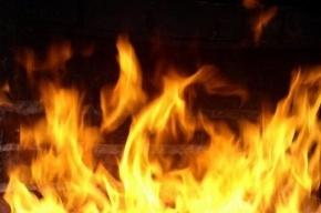В Красносельском районе спасатели эвакуировали женщину из горящей квартиры
