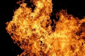 Пять человек спасли из горящей квартиры на улице Доблести
