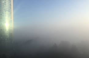 Туман накрыл окраины Петербурга