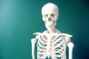 В квартире на Дачном проспекте обнаружили скелет пожилого мужчины