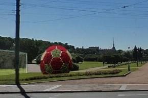 Аэропорт и Марсово поле превратят в футбольные площадки