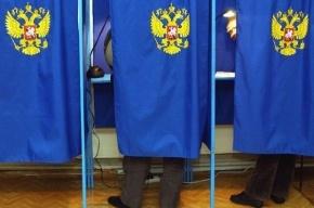 Явка на выборах главы Иркутской области достигла 35%