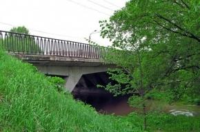 Пенсионер бросился с Авангардного моста в реку Дудергофку