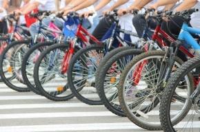 Депутаты Петербурга сели на велосипеды