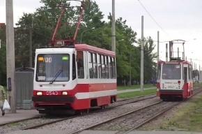 Маршрут двух трамваев изменится в Петербурге