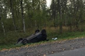 Автомобиль перевернулся на Мурманском шоссе