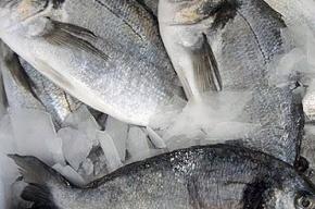 Запрещенную китайскую рыбу нашли в петербургском порту
