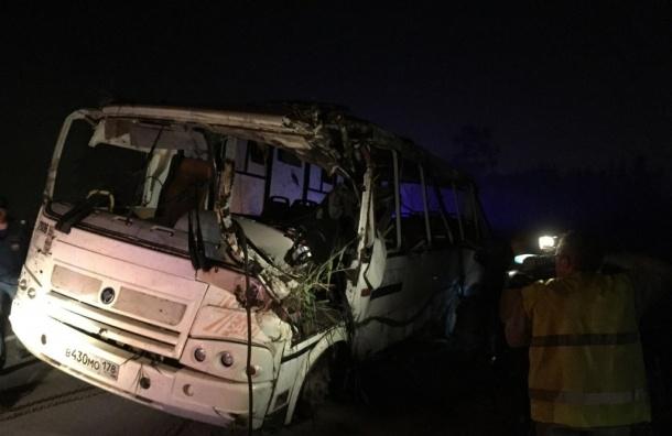 Под Петербургом в ДТП столкнулись автобус и грузовик