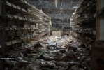 Фотографии Фукусимы спустя 4 года после аварии на АЭС: Фоторепортаж