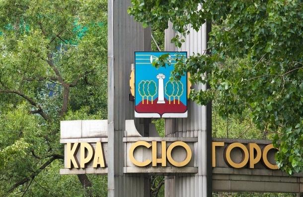 Полиция установила личность подозреваемого в убийстве замглавы Красногорска