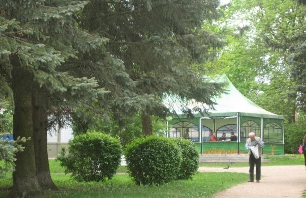 Летнее кафе в центре Пушкина признали незаконным