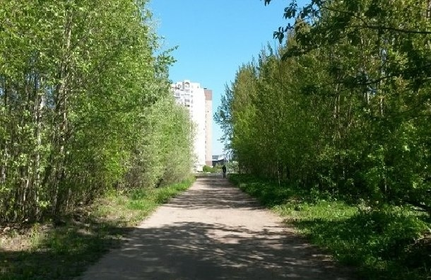Жители просят сохранить от застройки сквер на Савушкина, 112