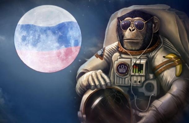Россия готовит обезьян для отправки на Марс