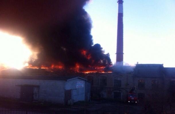 Пожар на Красносельском бумажном комбинате локализован