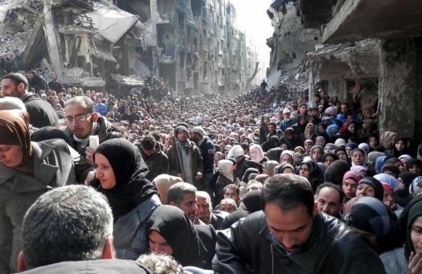 Беженец из Сирии в Петербурге заплатит 18 млн штрафа за попытку перейти границу