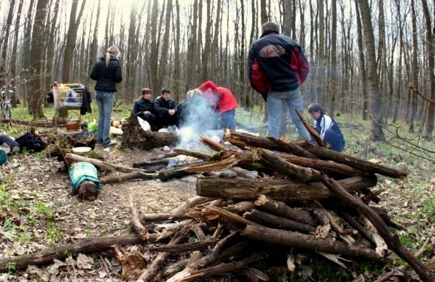 Налог за посещение леса предлагает ввести в России депутат ЗакСа Ленобласти