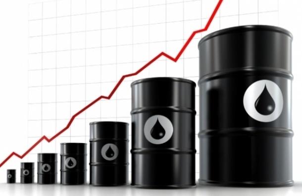 Цена на нефть марки Brent подорожала до $49