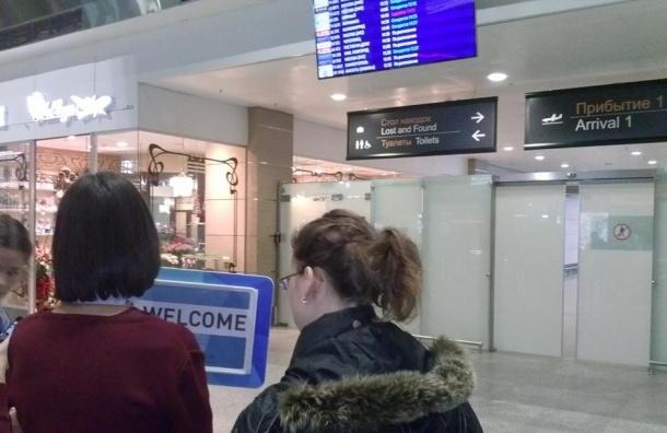 Родственников пассажиров упавшего самолета везут в один из отелей Петербурга