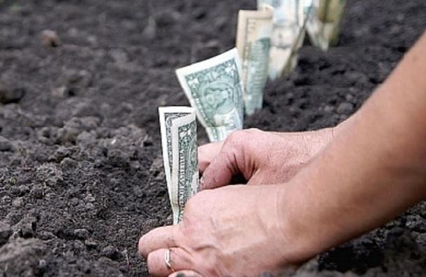 Торговля землей на Мориса Тореза завершилась делом о мошенничестве на 10 млн