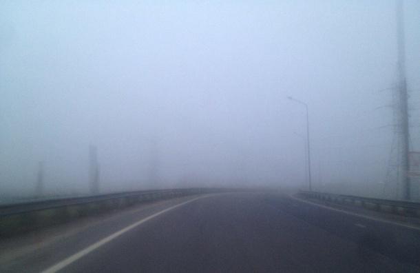 Петербург накрыл туман