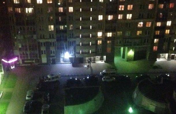 Девочка упала с балкона 16-го этажа на Ланском шоссе, 14
