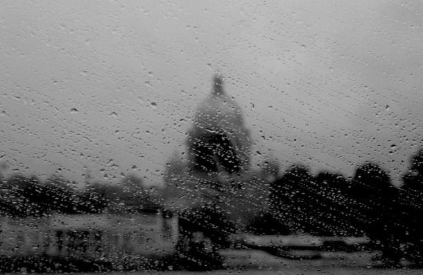 Погода в Петербурге сегодня ожидается дождливая