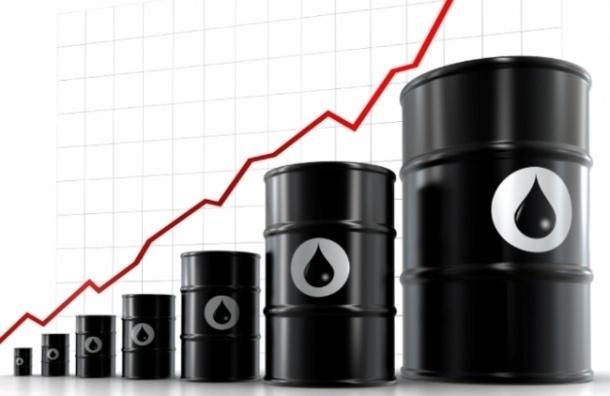Цена на нефть марки Brent поднялась до $51,50 за баррель