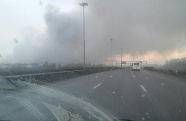 Пожар на Парнасе: МЧС продолжает работу на месте возгорания