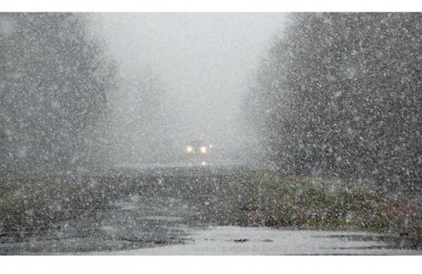 Погода в Ленобласти: синоптики обещают до минус восьми