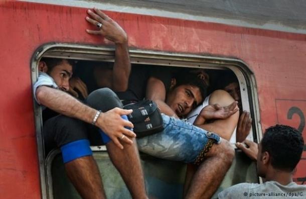 ЕС может депортировать до полумиллиона нелегальных мигрантов