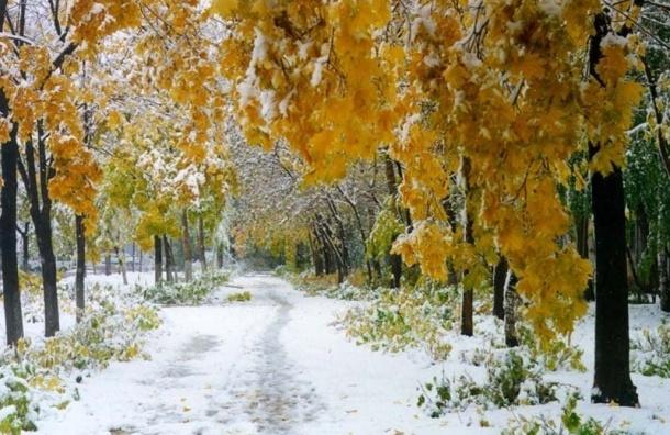 Первый снег в Москве ожидают уже в эту среду