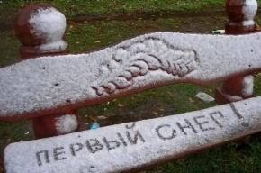 Непогода: Первый снег пошел в Петербурге