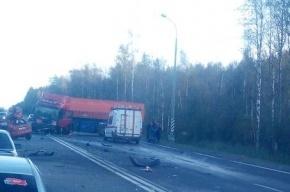 Очевидцы: на Московском шоссе бензовоз столкнулся с «Форд Фиестой», есть труп