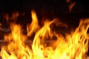 Женщина пострадала в пожаре в Калининском районе