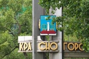 МВД обещает 1 млн рублей за информацию о «красногорском стрелке»