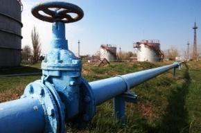Аварию на газопроводе в Петроградском районе удалось ликвидировать