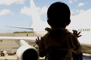 Авиакатастрофа в Египте унесла жизни 27 детей