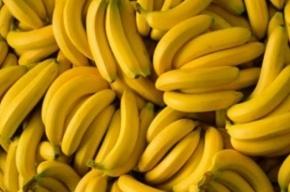 Фура с 21 тонной бананов похищена с овощебазы