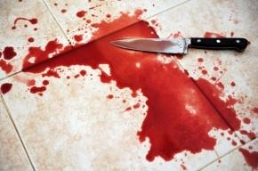 Жуткое убийство в Ленобласти: мужчина отрезал своей 24-летней возлюбленной голову